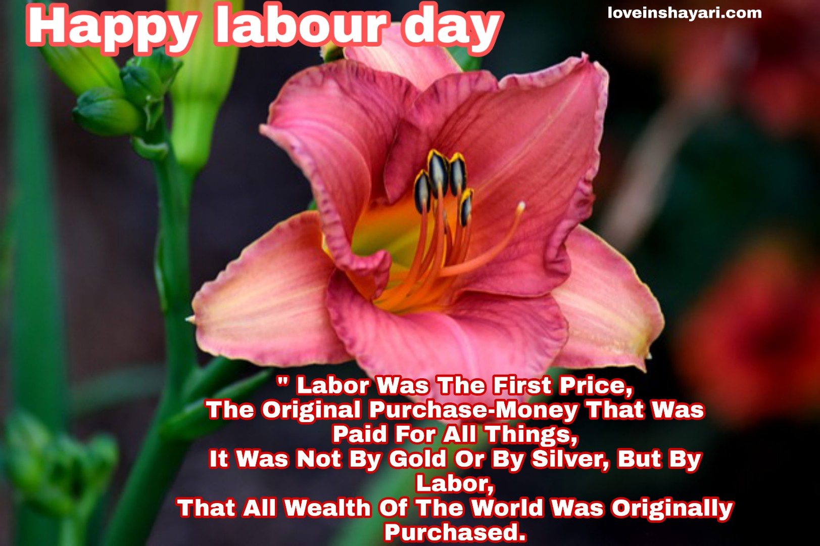 Labour day images