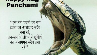 Nag Panchami wishes shayari quotes messages
