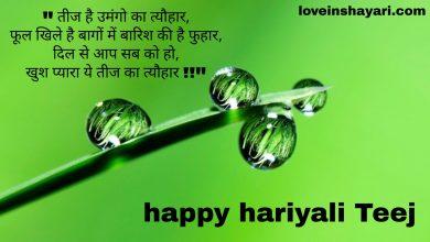 Hariyali Teej status whatsapp status
