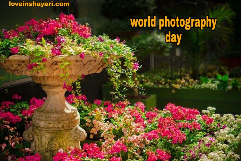 World photography day whatsapp status